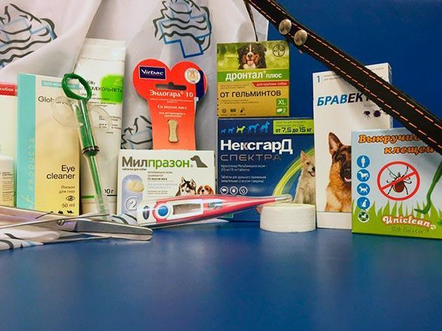 Если у мопсов есть хронические заболевания, то требуется собрать аптечку исходя из имеющихся заболеваний
